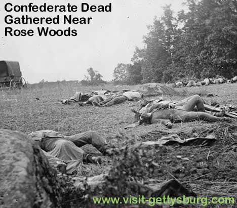 Confederate Dead Gathered for Burial Near Rose Woods