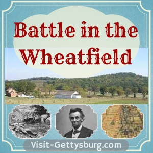 Featured Photo: Battle in the Wheatfield