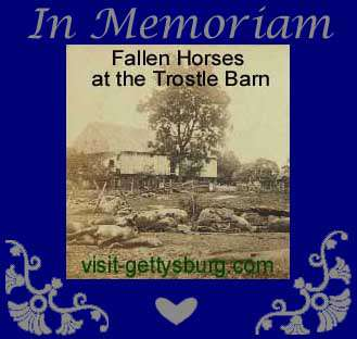 fallen horses at the Trostle Barn